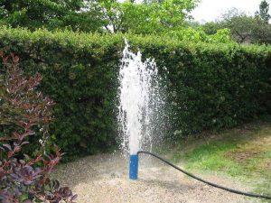Vandens greziniai